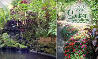 1/2 Price Sunken Gardens Groupon Deal for Tampa Bay
