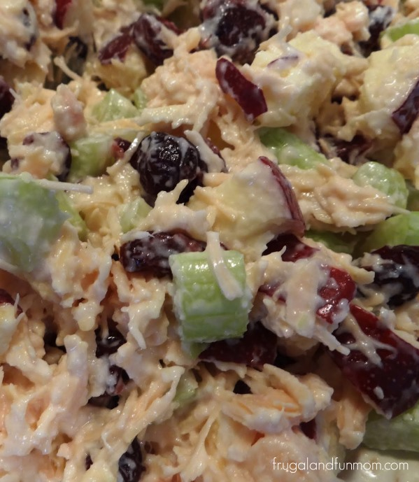 Cranberry and Apple Chicken Salad Recipe! Takes Less Than 10 Minutes To Prepare!