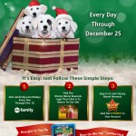 Earn 5 Disney Movie Rewards Bonus Points Every Week Day Through December 25th!