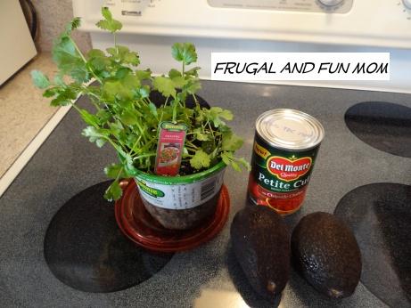 Guacamole 3 Ingredients 2