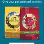 Free Sample of Purina One Dog Food!