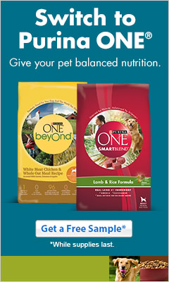 Free Sample of Purina One Dog Food!