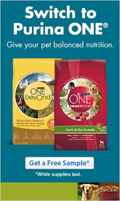 Purina One Dog Food Sample