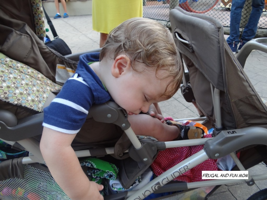 Baby at Busch Gardens asleep
