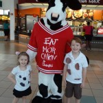 Are You Dressing Up Like A Cow For FREE Food? This Friday July 12th, 2013 Is Cow Appreciation Day at Chick-fil-A!