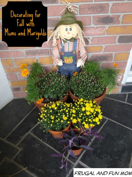 fall front door display with scarescrow and mums and marigolds