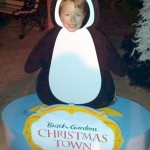 Christmas Town at Busch Gardens Tampa Bay! A Fun Festive Lighted Holiday Experience!