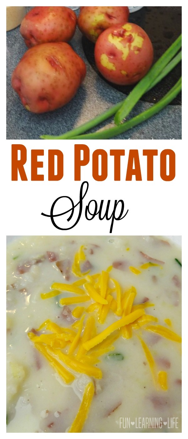 Red Potato Soup Recipe! An Easy Side or Hearty Dinner Idea! - Fun ...