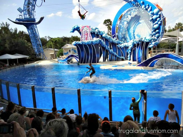 Trip-To-SeaWorld-Orlando-13