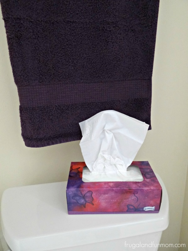 Scotties Tissues in Bathroom