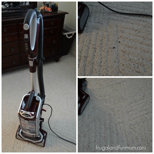 Shark regular vacuuming