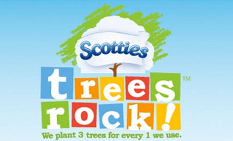 Trees Rock Contest Scotties