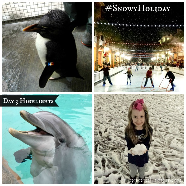 Day-3-Snowy-Holiday-Kissimmee