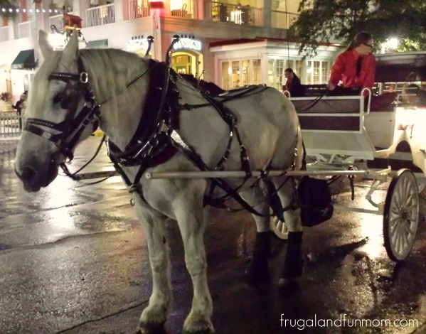Horse Drawn Carriage in Downtown Celebration Now Snowing