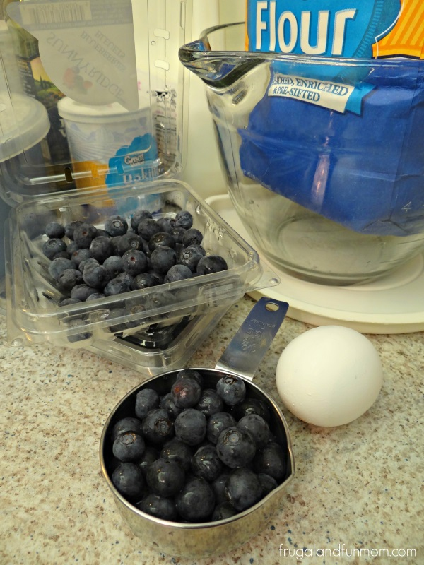 Ingredients for Blueberry Waffles