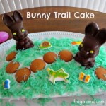 Bunny Trail Cake Made With Palmer Chocolate Easter Candy and a Cotton Tail!