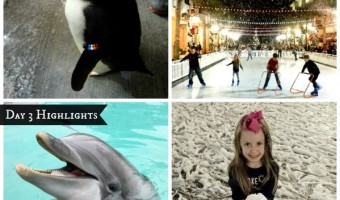 Things To Do Around The Holidays in Kissimmee Florida – Day 3! #SnowyHoliday