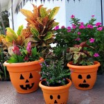 Jack O'Lantern Flower Pots! An Alternative To Using a Pumpkin for Halloween!