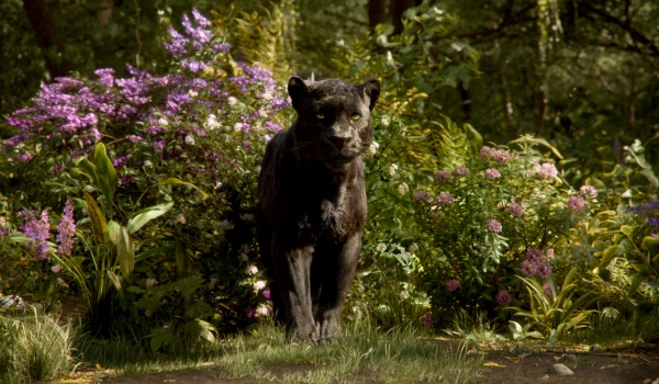 THE JUNGLE BOOK - (PICTURED) BAGHEERA. ©2016 Disney Enterprises, Inc. All Rights Reserved.