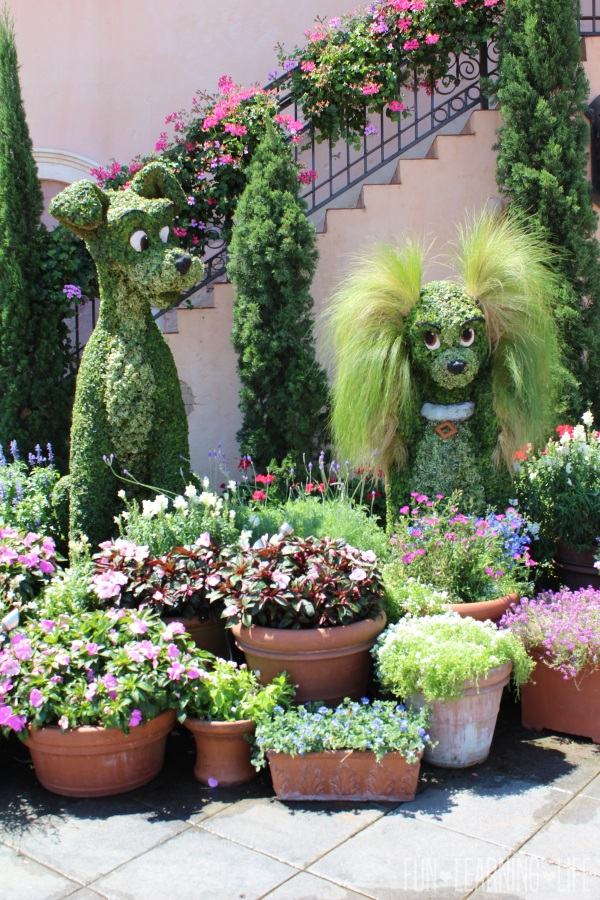 Lady and the Tramp Character Topiary at Epcot International Flower and Garden Festival