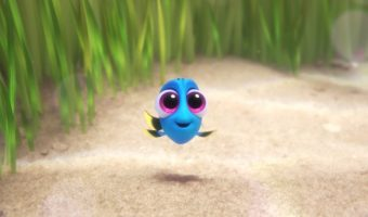 See Baby Dory and Free Printable Coloring and Activity Pages for Finding Dory!