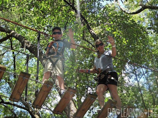 Tree to Tree Adventures at the Tallahassee Museum Canopy Crossing Course