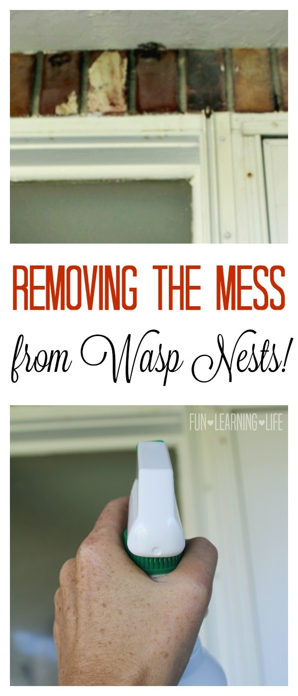How I removed the mess from Wasp Nests