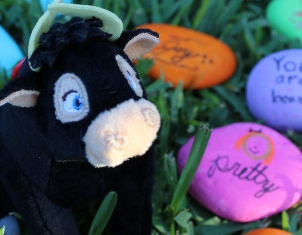 How To Create and Share Kindness Rocks and Spreading The Message of Ferdinand!