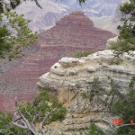 Free Entrance into National Parks