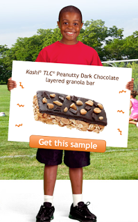 Check Out Kashi's Kid-Friendly Top 10 Foods! Plus, A FREE Sample of Kashi Peanutty Dark Chocolate Layered Granola Bars Is Available, Offer Ends 8/28/2011.