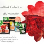 Air Wick National Park Scents Review!  I Got To Sample A Few of the Tropical Inspired Products.