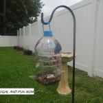Homemade Bird Feeder with a Hawaiian Punch Jug! Easy DIY Children's Craft!