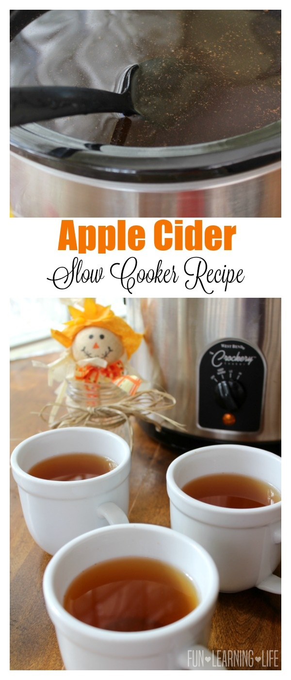 Apple Cider Slow Cooker Recipe