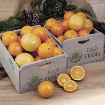Fruit pick for Farmers Market