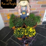 Decorating for Fall with Mums and Marigolds!  Front Door Display With Terracotta Pots!