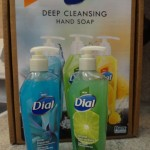 Dial Deep Cleansing Hand Soap Review and Giveaway! Has Micro-Scrubbers and Smells Wonderful!