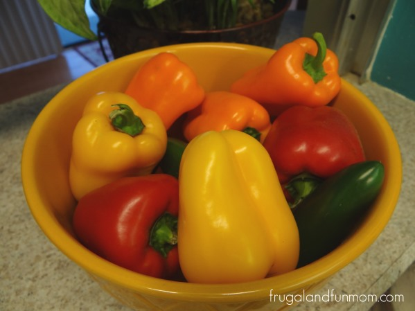 Bellafina-Peppers-at-home