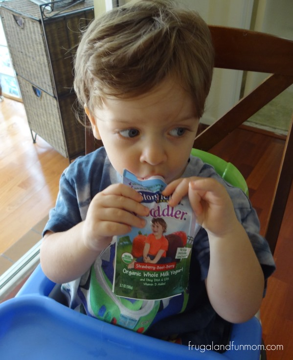 Stonyfield's YoToddler Review Organic Yogurt
