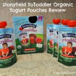 Stonyfield YoToddler Organic Yogurt Pouches Review! Made with Real Fruit and Vegetables!