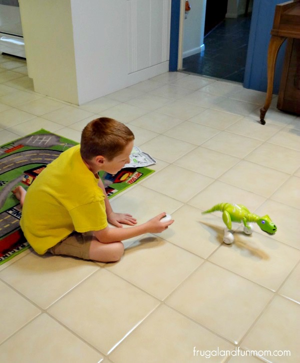 Zoomer Dino Review! See How Boomer Plays! #ZoomerDino #Ad