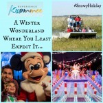 Visiting Kissimmee for the #SnowyHoliday Event! A Florida Winter Wonderland!