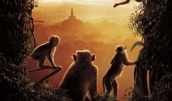 Disneynature Monkey Kingdom Review With Necklace Giveaway! #MonkeyKingdomEvent