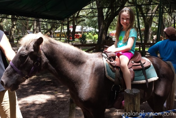 Riding a pony at Green Meadows Petting Farm
