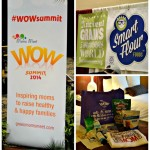 Moms Meet WOW Summit 2014 – Laughing, Learning, and Sampling! #WOWSummit