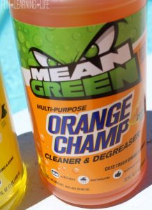 Mean Green Orange Champ