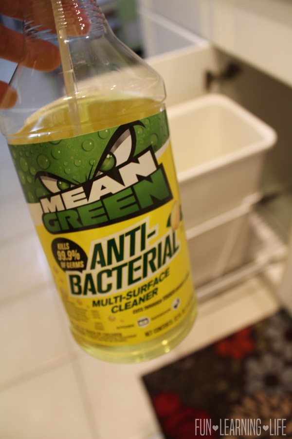 Cleaning a garbage can with Mean Green Aniti Bacterial Product.