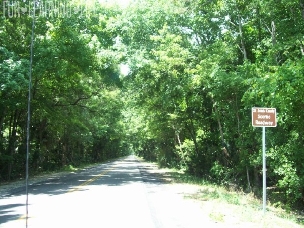 St. John's Scenic Roadway 9 Mile St. Augustine