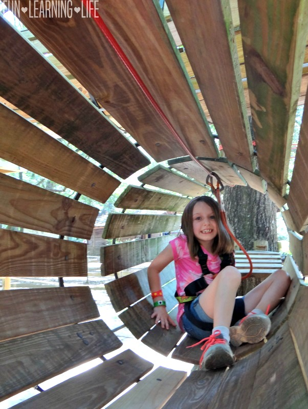 Tree to Tree Adventures at the Tallahassee Museum TREEmendous Adventure Course