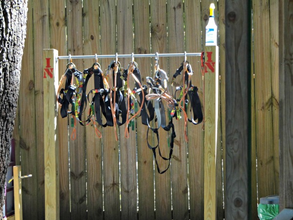 gear at Tree to Tree Adventures at the Tallahassee Museum