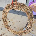 Birdseed Wreath Craft! A Paper Plate Activity For The Kids!